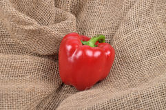 Pepper on jute Royalty Free Stock Photography