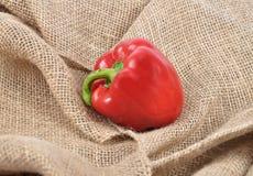 Pepper on jute Stock Photo