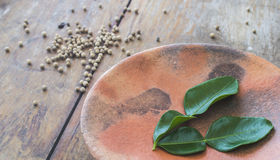 Pepper and kaffir lime leafs. On earthen plate Stock Photography