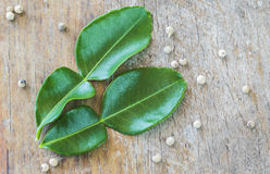 Pepper and kaffir lime leafs Royalty Free Stock Images