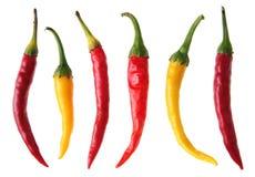 pepper koloru Zdjęcie Royalty Free