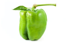 Pepper with leaf Stock Images