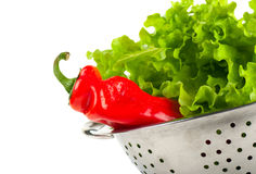 Pepper and lettuce Royalty Free Stock Photos