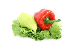 Pepper and lettuce Royalty Free Stock Photo