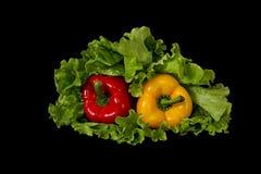 Pepper, lettuce. Vegetables on a black background Stock Images
