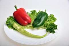Pepper and lettuce. Red and green pepper on lettuce Royalty Free Stock Images