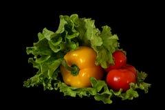 Pepper, lettuce, tomatoes. Vegetables on a black background Stock Photo