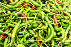 Pepper market Royalty Free Stock Image