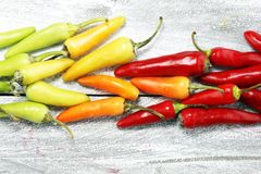 Pepper. Mexican hot chili peppers colorful mix habanero poblano. Serrano jalapeno on wood royalty free stock image