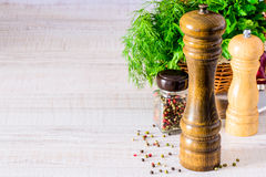 Pepper Mill Grinder with Herbs Copy Space Royalty Free Stock Image