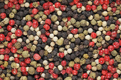 Pepper mix Stock Images