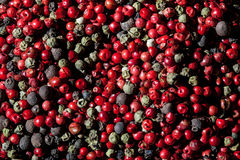 Pepper mix background Royalty Free Stock Photography