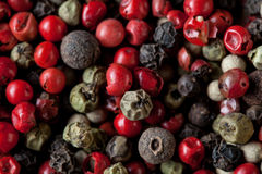 Pepper mix background Stock Image