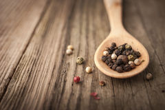 Pepper mix on the wooden spoon horizontal Royalty Free Stock Images