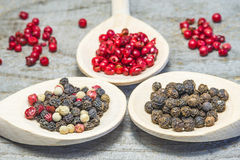 Pepper mixture. Of black and mixed and pink seeds Royalty Free Stock Images
