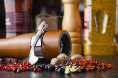 Pepper mixture. seasoning for any dish, on a spoon Royalty Free Stock Photography
