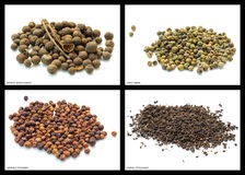 Pepper mixtures Stock Photo
