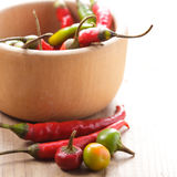 Pepper in mortar Royalty Free Stock Photo