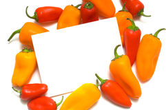 Pepper Notecard. A notecard with Fresh sweet peppers on white background, with copy space Stock Images
