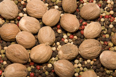 Pepper and nutmeg Royalty Free Stock Images