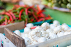 Pepper, onion and garlic in market Stock Photography