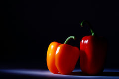Pepper pair on a drak background. Vegan food Royalty Free Stock Photography