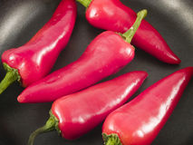 Pepper pan2 Stock Image