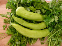 Pepper and Parsley. On the board for salat Stock Photography