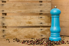 Pepper and pepper mill Stock Images