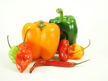 Pepper piles Stock Images