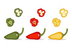 Pepper pod vector illustration Set. Vegetable isolated object full and slices red, green, yellow pepper royalty free illustration