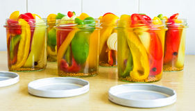 Pepper ready to canning. Few types of pepper ready to canning stock photography