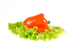 Pepper and salad leaf Stock Photos