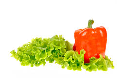 Pepper and salad leaf Royalty Free Stock Photography