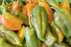 Pepper for sale Royalty Free Stock Photos