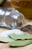 Pepper, salt and bay leaves Stock Images