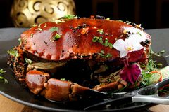 Pepper sauce crab Royalty Free Stock Photography