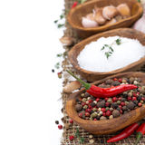 Pepper, sea salt and spices in wooden bowls Stock Photos
