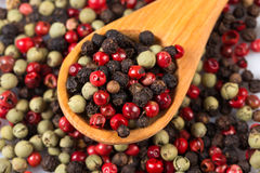 Pepper seasoning mix in wooden spoon Royalty Free Stock Photography