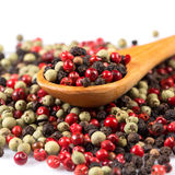 Pepper seasoning mix in wooden spoon Royalty Free Stock Photo