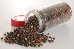 Pepper seed. Royalty Free Stock Photo