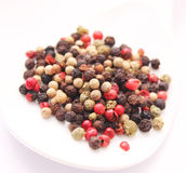 Pepper seeds. Some colorful dried pepper seeds Royalty Free Stock Image