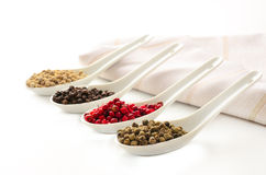 Pepper Selection. On japanese ceramic spoons Stock Image
