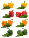 Pepper Selection Royalty Free Stock Image