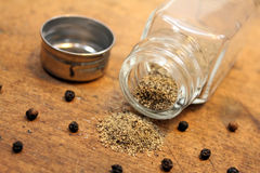 Pepper shaker Royalty Free Stock Photography