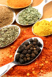 Pepper with six other spices Stock Image