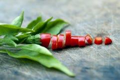 Pepper. Sliced on wood block Stock Photos