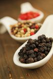 Pepper spice Royalty Free Stock Images