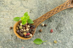 pepper spice grains in a wooden spoon Royalty Free Stock Image
