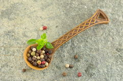 Pepper spice grains in a wooden spoon Stock Images